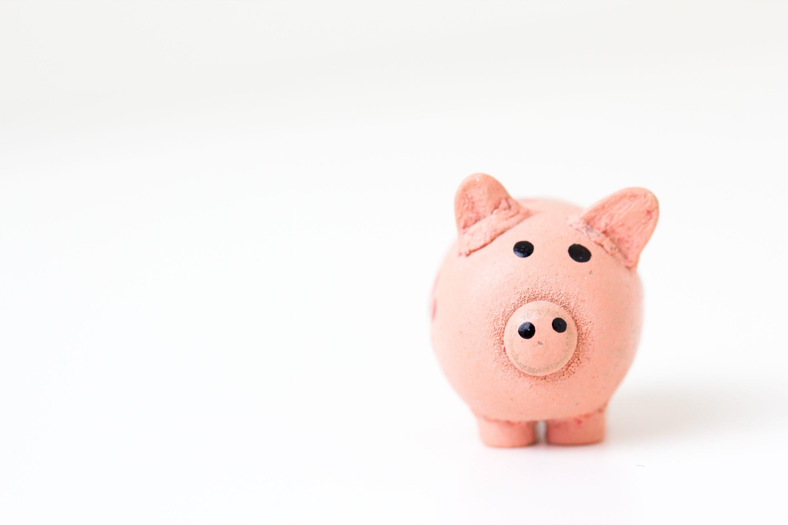 Gratis en voor niets: waarom je ook voor 'leuk' werk moet betalen